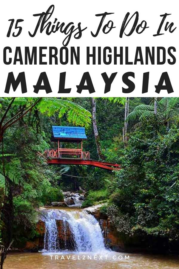 15 Things To Do In Cameron Highlands